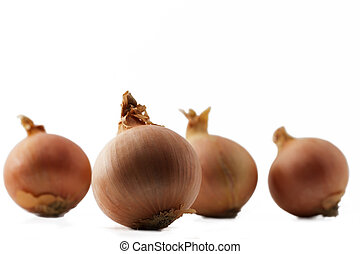 zwiebel, einige, eins, andere, hintergrund, front, weiße zwiebeln
