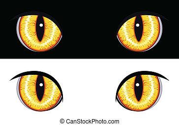 zwierzę, oczy, zły