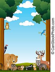 zwierzę, w, przedimek określony przed rzeczownikami, dżungla