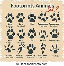 zwierzęta, ślady, wektor, -, set.